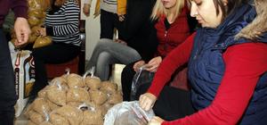 Beypazarı Belediyesinin gıda yardımları