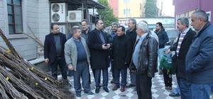 Türkeli'de ceviz fidanı dağıtımı