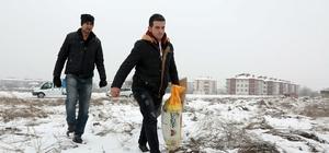 Bolu'da sokak hayvanları için mama bırakıldı