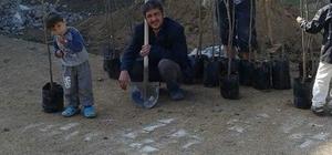 """Bozkır'da """"Bozdam Mahallesi'nde Bir Dikili Ağacın Olsun"""" Kampanyası"""