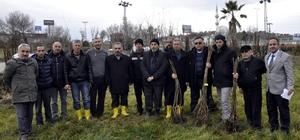 Sinop'ta çiftçilere 10 bin ceviz fidanı dağıtıldı