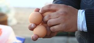 Kırklareli'nde yumurtaya zam gelmedi