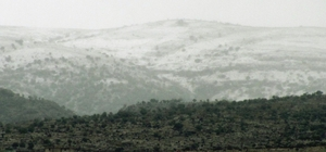 Araban'a mevsimin ilk karı düştü