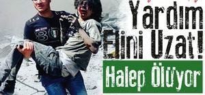 Şile Belediyesinden Halep'e yardım kampanyası