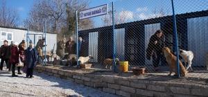 Lapseki hayvan barınağı açıldı