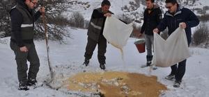 Yoğun kar yağışında yaban hayvanları unutulmadı