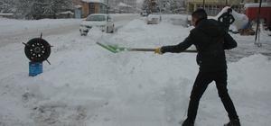 Van'da kar hayatı durma noktasına getirdi