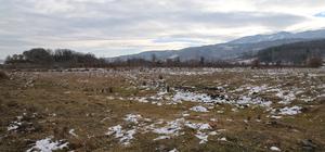 Uludağ'ın kaynak suları 80 milyon liraya şişelenecek