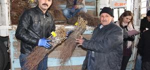 Erbaa'da bağ çubuğu dağıtımı