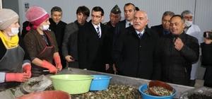 Sinop Valisi İpek'in ziyaretleri