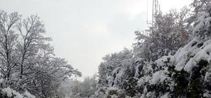 Karamürsel'de kış