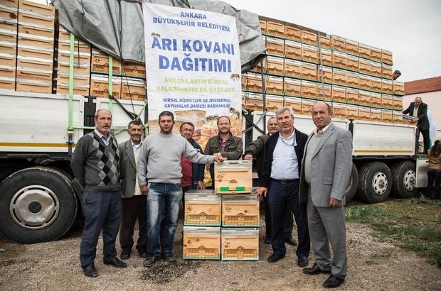 Ankara Büyükşehir Belediyesi 2017'de üreticilere 4 bin arı kovanı dağıtacak
