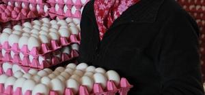 Tüketiciyi üzen yumurta fiyatı üreticiye nefes aldırdı