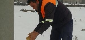 Ereğli'de sokak hayvanlarına yem bırakıldı