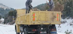 Çameli'nde karla mücadele çalışmaları devam ediyor