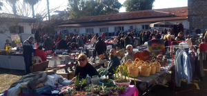 Köyceğiz'de Noel pazarı