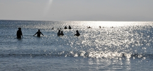 Hayvan kostümü giyen hayvanseverler Aralık'ta denize girdi