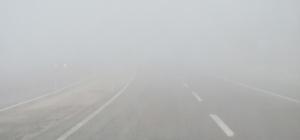 Araban'da sağanak yağış ve yoğun sis