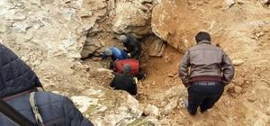 Kayalıklara sıkışan köpek 8 gün sonra kurtarıldı