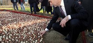Kağıthane'de 15 Temmuz şehitleri anısına 15 bin çiçek