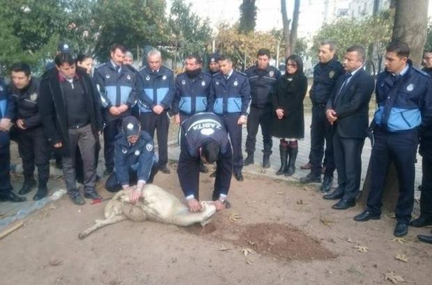 Efeler Belediyesi zabıtasından Çevik Kuvvet'e moral ziyareti