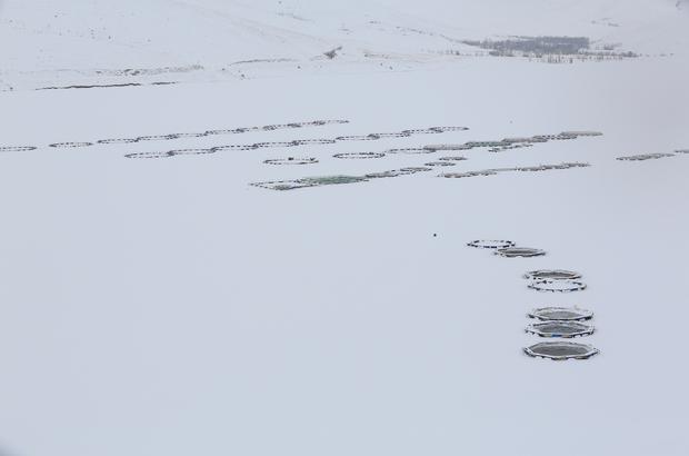 Bayburt'ta baraj gölü dondu
