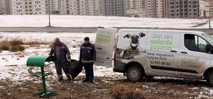 Talas Belediyesi yaban ve sokak hayvanlarını unutmadı