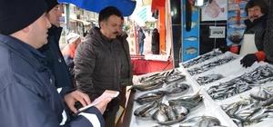 Görele'de zabıta ekipleri balıkçıları denetlendi
