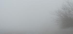 Araban İlçesi Karadağ Geçidinde yoğun sis