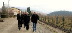 Zonguldak'ta Ginseng potansiyel deneme sahaları tespit edildi
