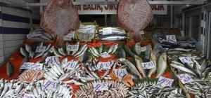 Soğuk balık fiyatlarını arttırdı