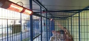 Büyükşehir'den sokak hayvanlarına elektrikli ısıtıcı desteği