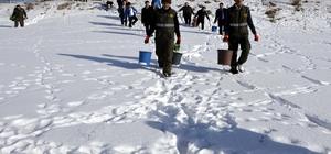 Ardahan'da yaban hayvanları için doğaya yem bırakıldı