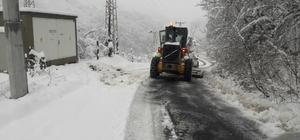 Yıkılan elektrik direği hem elektriksiz bıraktı hem köy yolunu kapadı