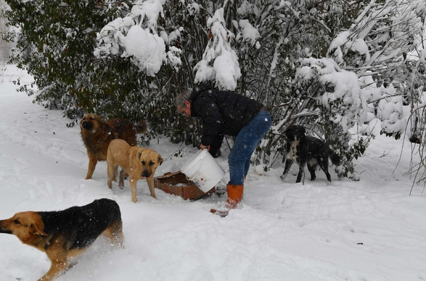Bahçelievler'de kış çalışmaları