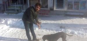 Esnaftan para toplayarak karda aç kalan sokak hayvanlarını beslediler