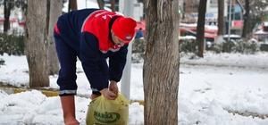 Erbaa Belediyesi sokak hayvanları için yiyecek bıraktı
