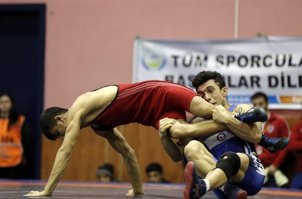 Serbest Güreş Türkiye Şampiyonası Ordu'da başladı