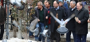 Kırıkkale Belediye Başkanı Saygılı kuş katliamının takipcisiyiz