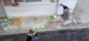İzmir'de komşular arasında kedi besleme kavgası