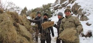 Yaban keçiler için dağlara ot bıraktılar