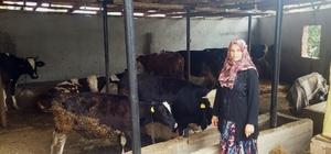 Kütahya'da 1 yılda 200 aileye ORKÖY kredisi