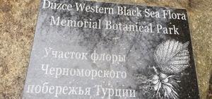Düzce Üniversitesi adına botanik hatıra parkı oluşturuldu