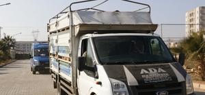 Şanlıurfa'da hayvan kaçakçılığı