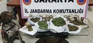 Jandarma ekiplerinden esrar operasyonu