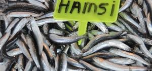 Olumsuz hava koşulları balık fiyatlarını artırdı
