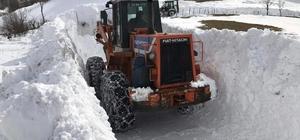 Ordu'da kar kalınlığı 60 cm