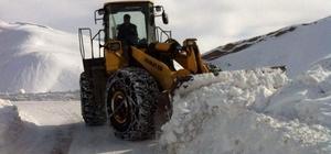Siirt'te 45 köy yolu ulaşıma kapandı