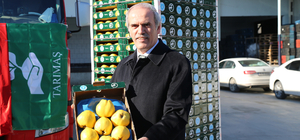 Bursa'dan Hollanda'ya ayva ihracatı