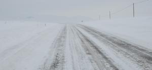 Bulanık ve Malazgirt'te kar esareti